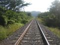 Train Tracks by Heraldicos