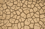 environment -climate change - drought