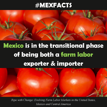 MexFact - Farm Labor