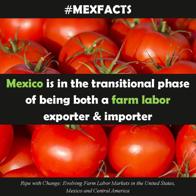 MexFact - Farm Labor