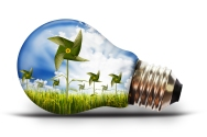 environment - energy - light bulb with paddy rice