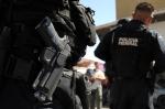 federal police mexico