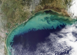 Sediment_in_the_Gulf_of_Mexico_(2)