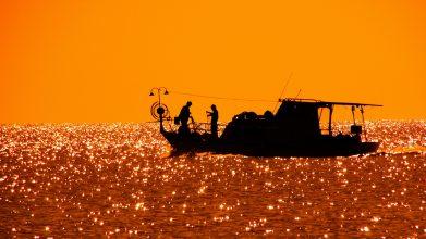 backlit-beach-boat-358423